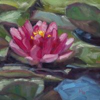 Water Lily - small daily oil by Krista Hasson