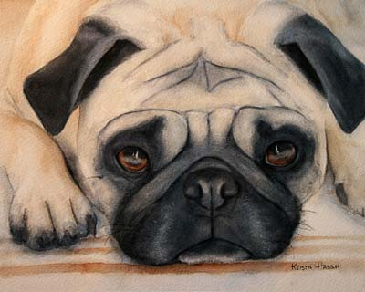 Pug watercolor painting Krista Hasson
