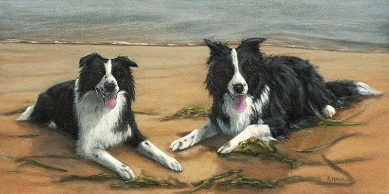 Border Collies finished commission WIP oil painting by Krista Hasson